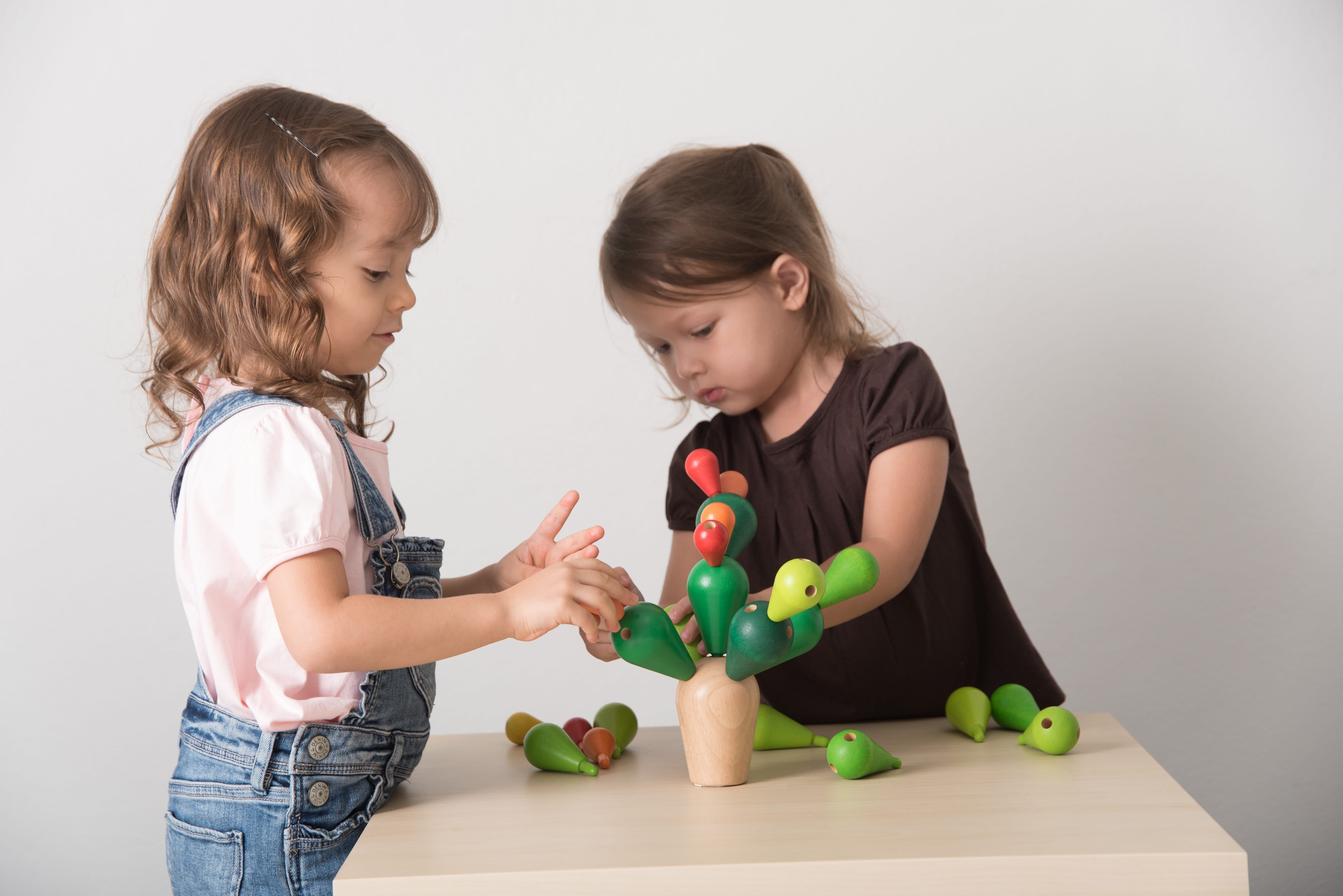 4101_PlanToys_BALANCING_CACTUS_Game_and_Puzzles_Concentration_Logical_Coordination_Problem_Solving_Language_and_Communications_Mathematical_3yrs_Wooden_toys_Education_toys_Safety_Toys_Non-toxic_6.jpg
