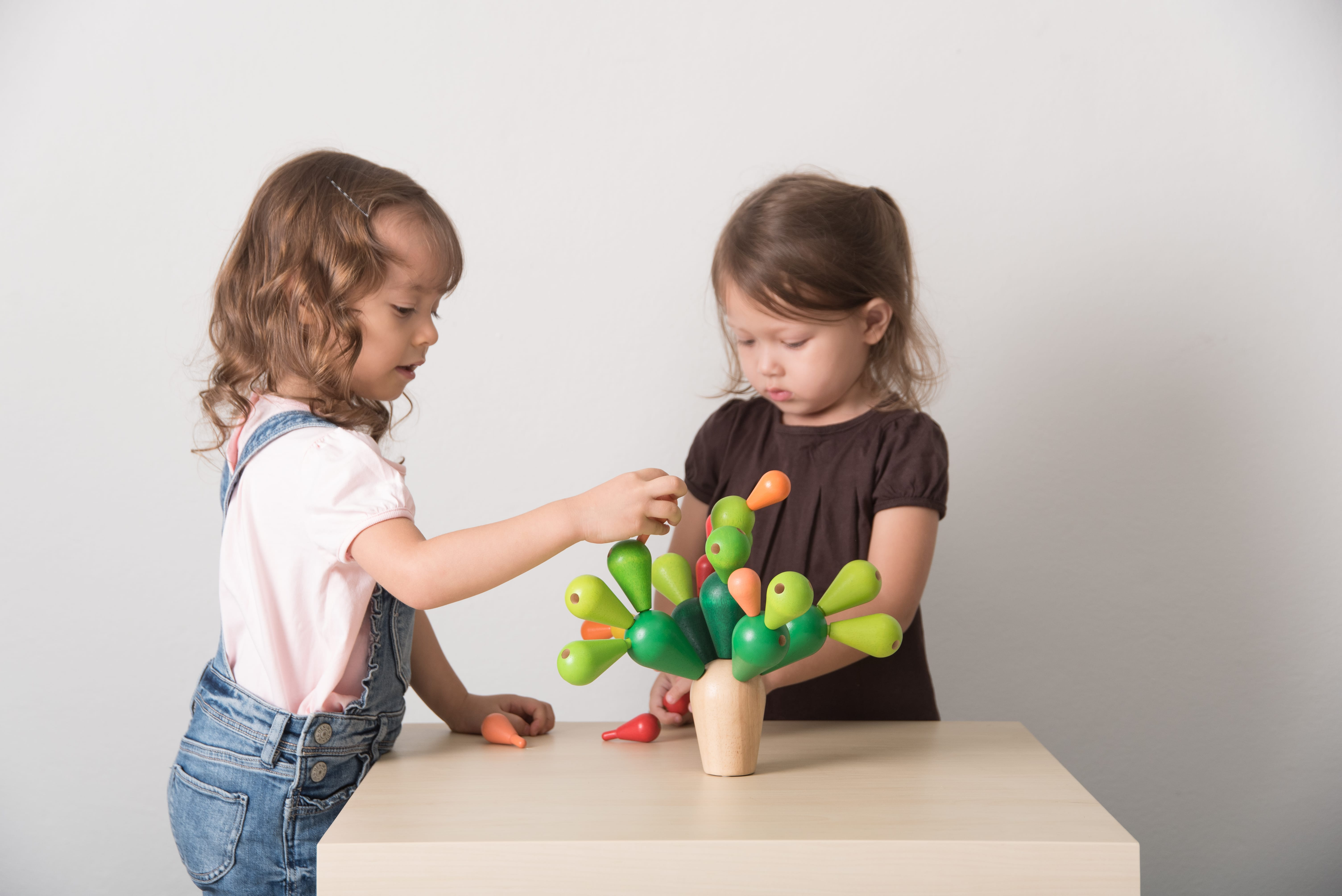 4101_PlanToys_BALANCING_CACTUS_Game_and_Puzzles_Concentration_Logical_Coordination_Problem_Solving_Language_and_Communications_Mathematical_3yrs_Wooden_toys_Education_toys_Safety_Toys_Non-toxic_7.jpg