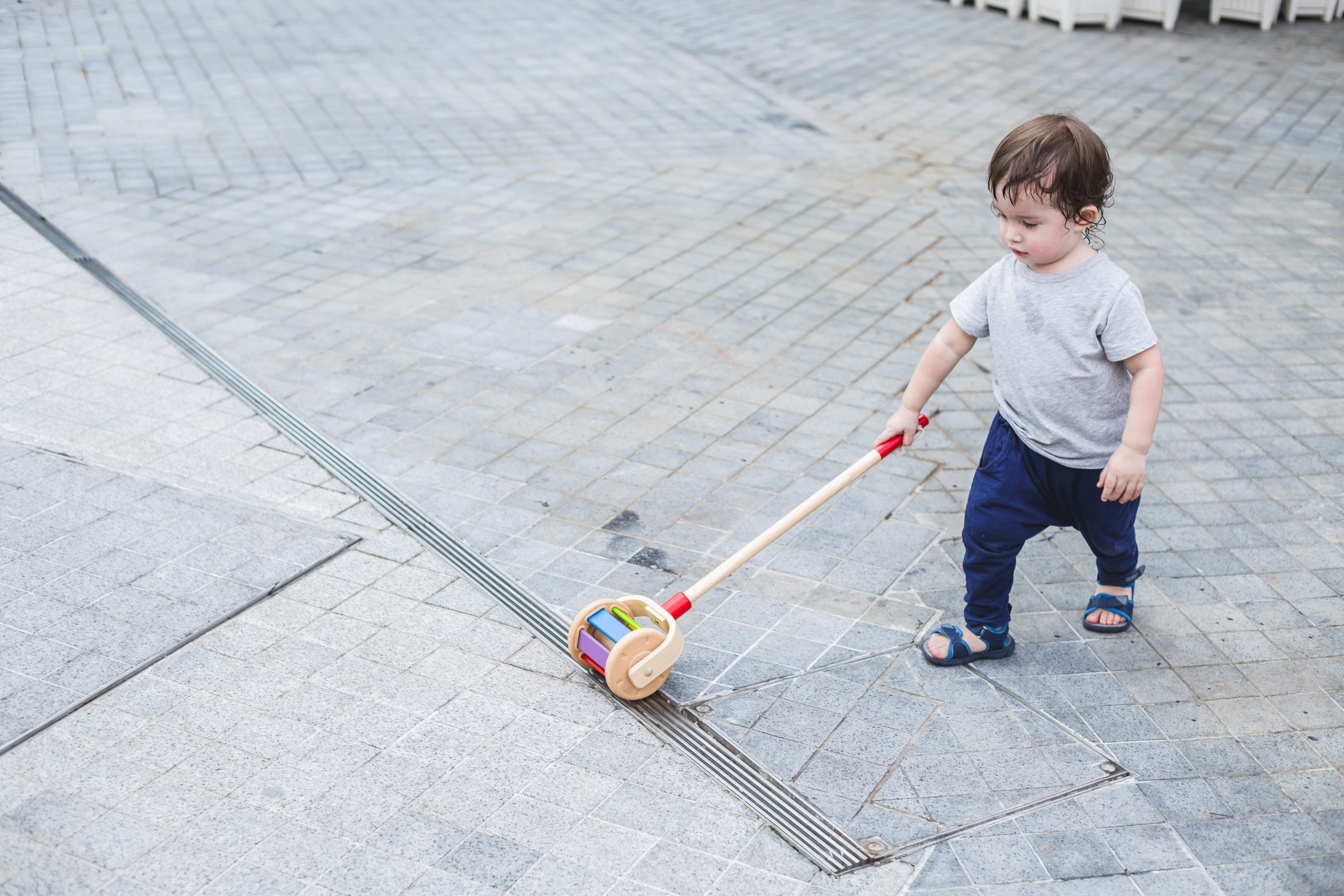 5137_PlanToys_WALK_N_ROLL_Push_and_Pull_Gross_Motor_Coordination_Cause_and_Effect_Auditory_12m_Wooden_toys_Education_toys_Safety_Toys_Non-toxic_2.jpg