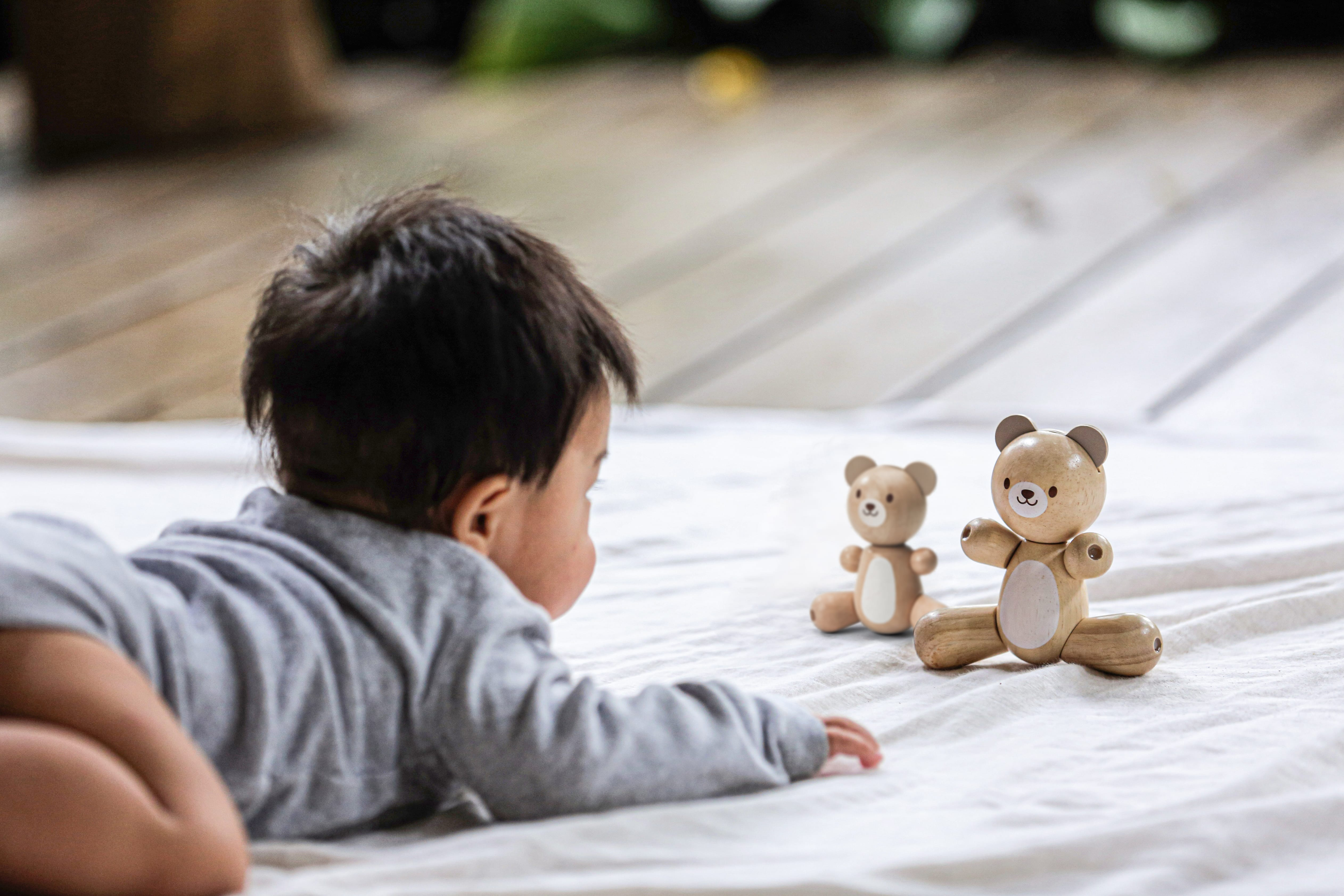 5264_PlanToys_BEAR_and_LITTLE_BEAR_Babies_Emotion_Coordination_Tactile_Language_and_Communications_Imagination_Social_12m_Wooden_toys_Education_toys_Safety_Toys_Non-toxic_0.jpg