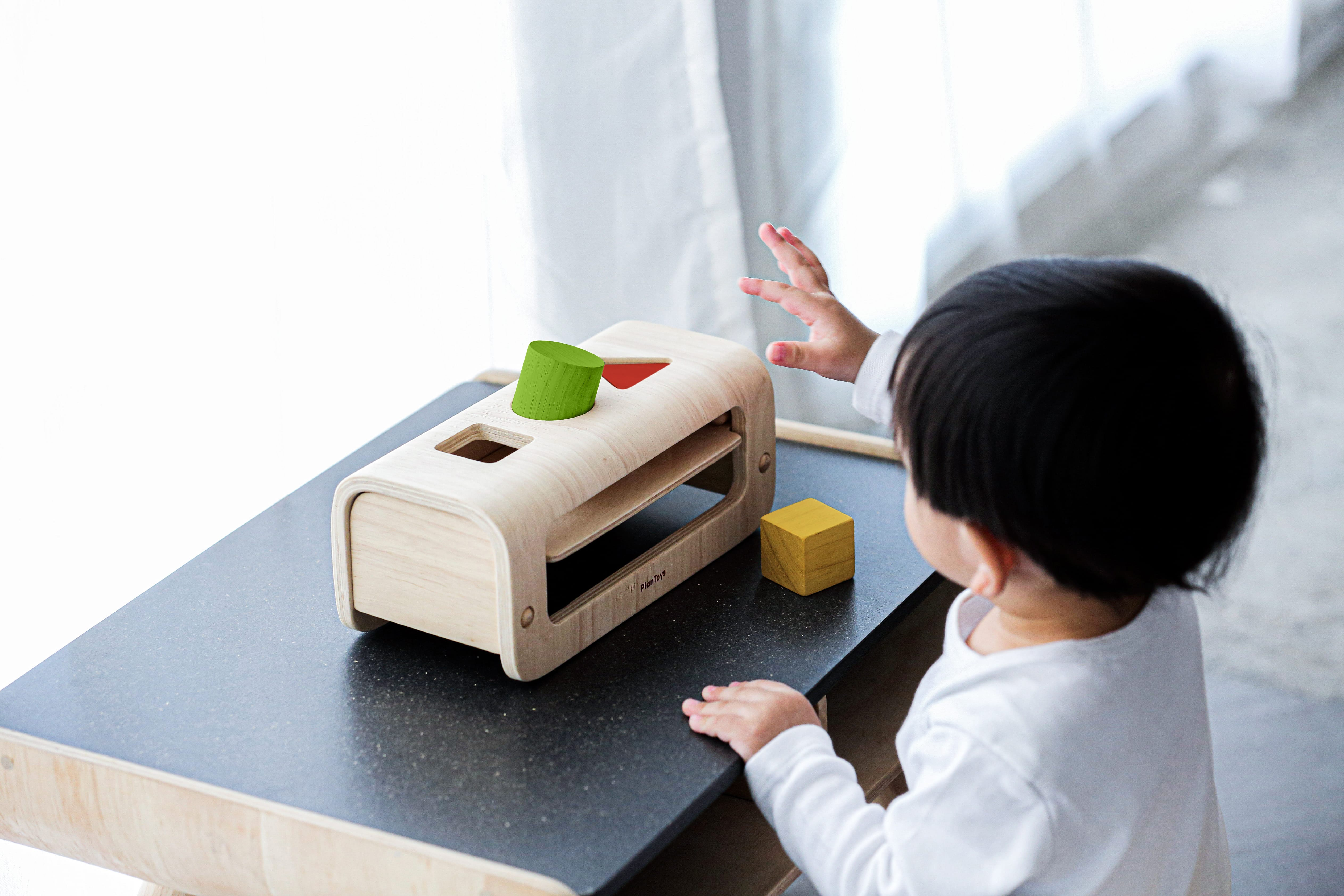 5398_PlanToys_SHAPE_and_SORT_Learning_and_Education_Problem_Solving_Mathematical_Visual_Coordination_Language_and_Communications_Fine_Motor_12m_Wooden_toys_Education_toys_Safety_Toys_Non-toxic_0.jpg