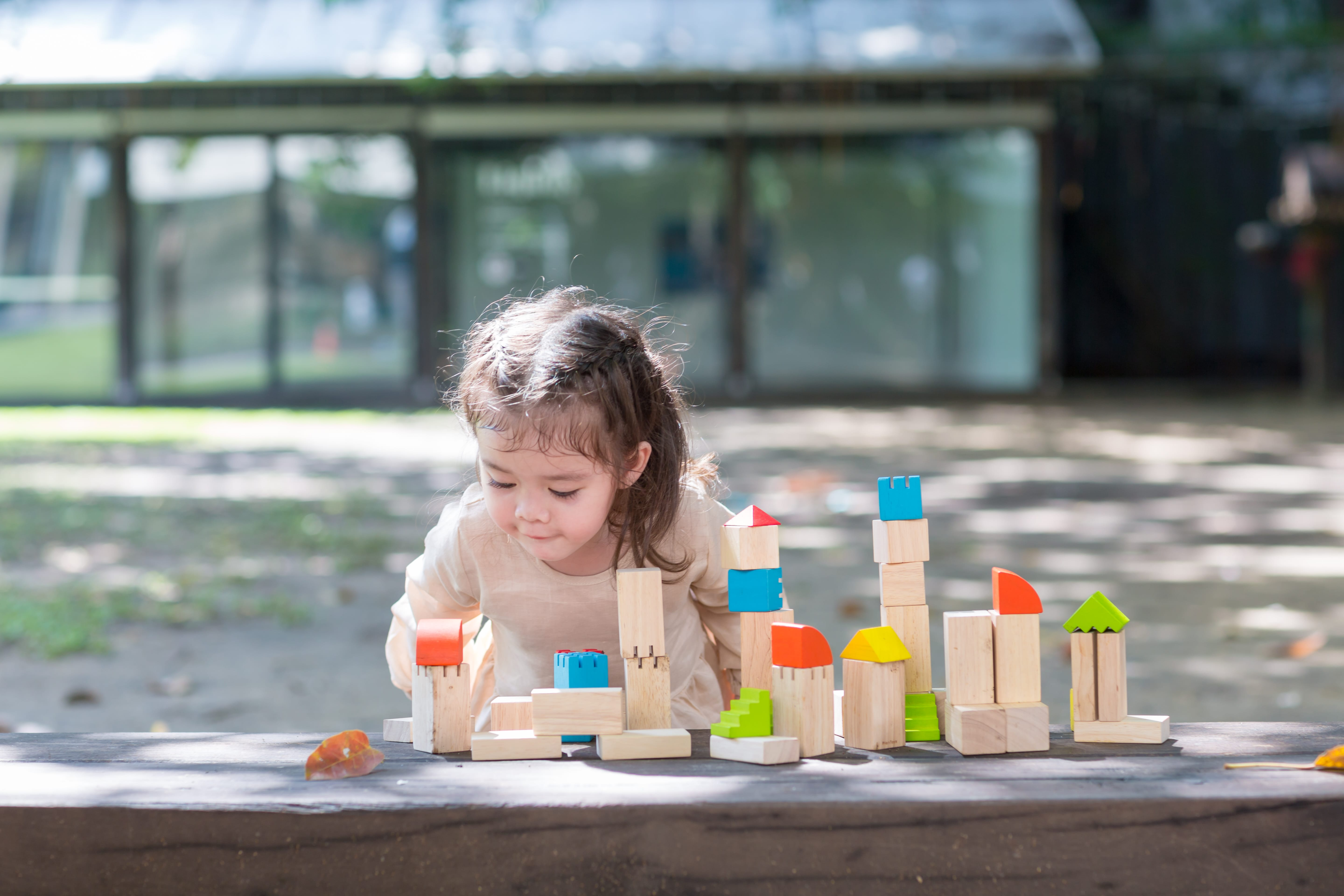 5527_PlanToys_CREATIVE_BLOCKS_Blocks_and_Construction_Mathematical_Creative_Fine_Motor_Language_and_Communications_18m_Wooden_toys_Education_toys_Safety_Toys_Non-toxic_2.jpg