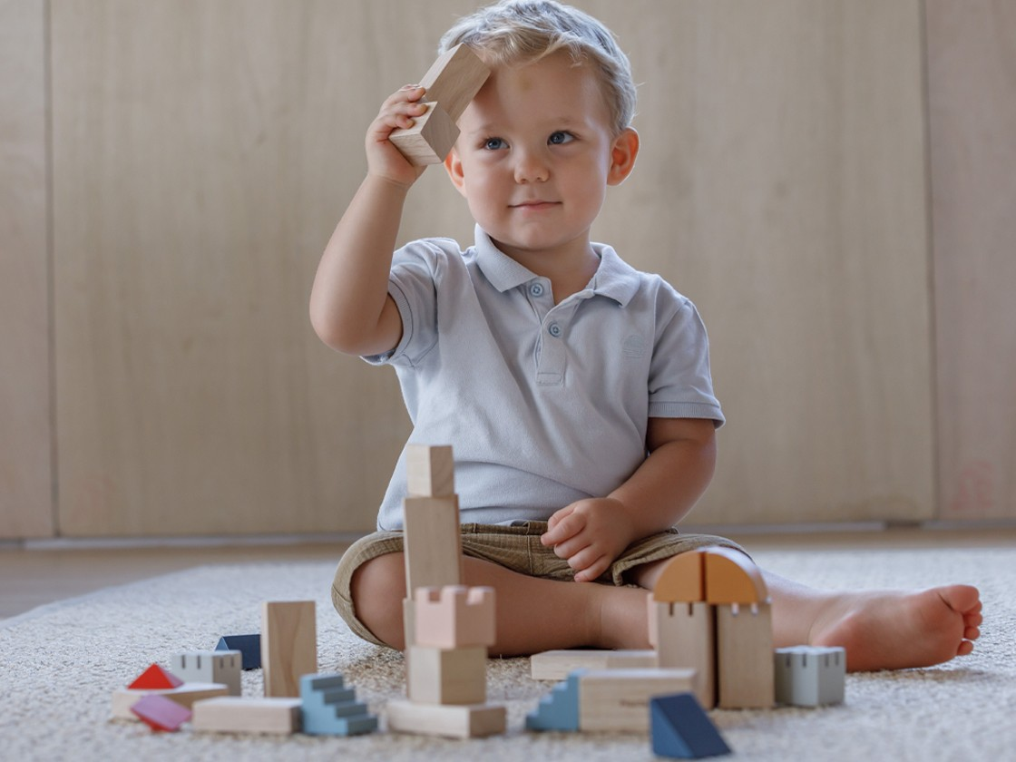 5542_PlanToys_Creative_Blocks_-_Orchard_Blocks_and_Construction_18m_Language_and_Communications_Imagination_Coordination_Concentration_Creative_Mathematical_Wooden_toys_Education_toys_Safety_Toys_Non-toxic_4.jpg