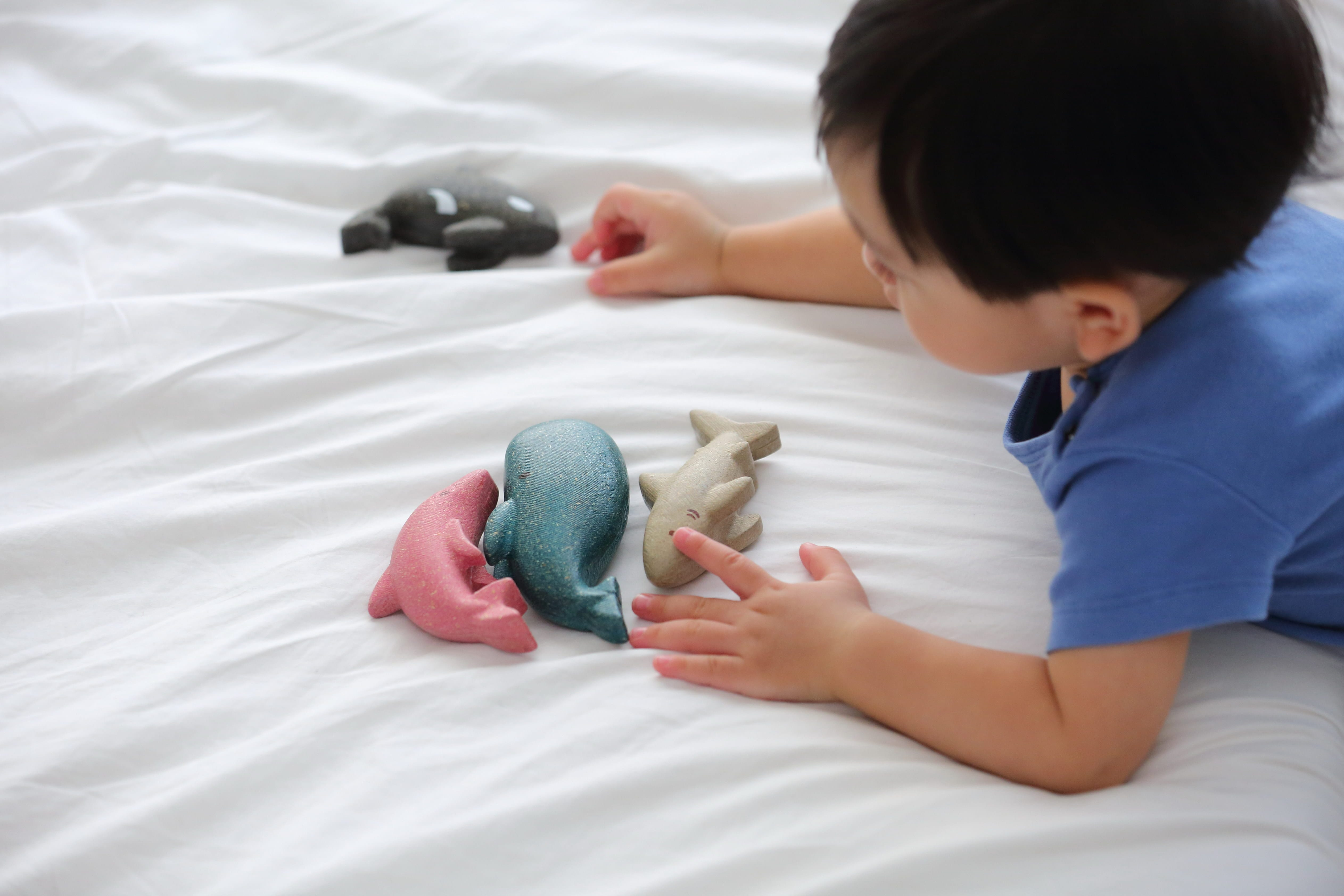 6140_PlanToys_WHALE_Pretend_Play_Imagination_Social_Language_and_Communications_Fine_Motor_12m_Wooden_toys_Education_toys_Safety_Toys_Non-toxic_1.jpg
